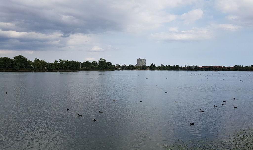 Udsyn ud over Damhusøen