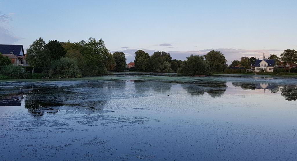 Blik ud over Emdrup sø