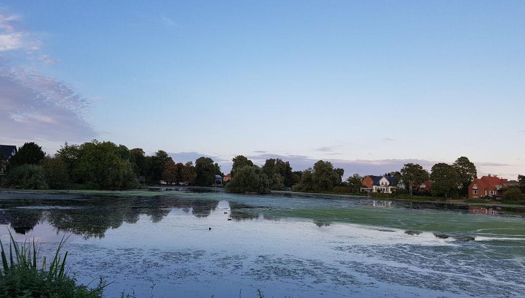 Udsigt ud over Emdrup sø