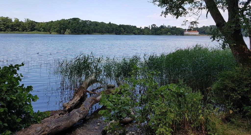 Udsigt ud over Farum sø