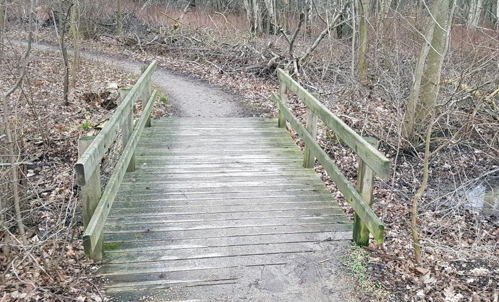Bro på vej ind i Gammelsmosen