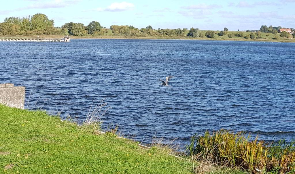 Haraldsted sø rundt